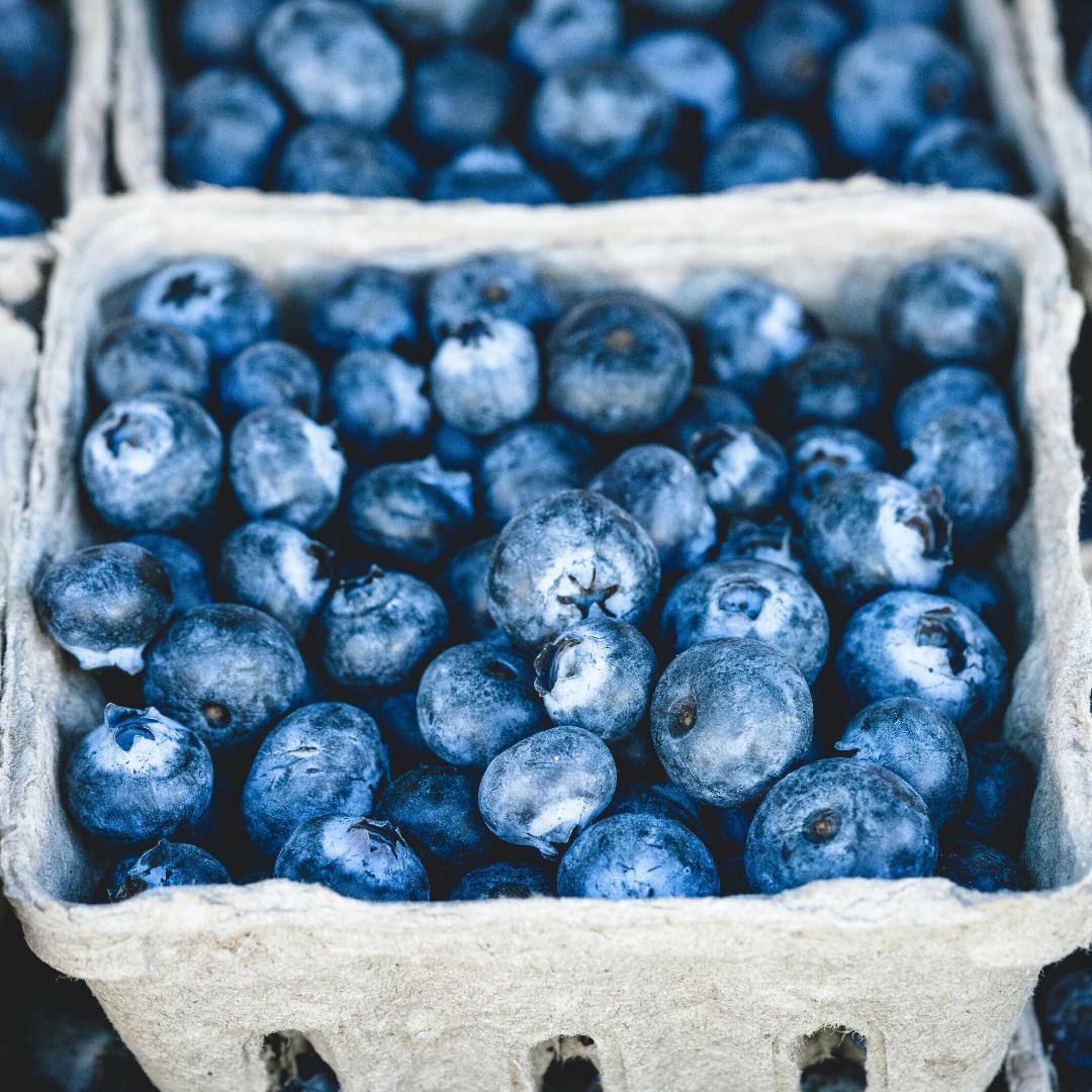 Blueberries for Fertility